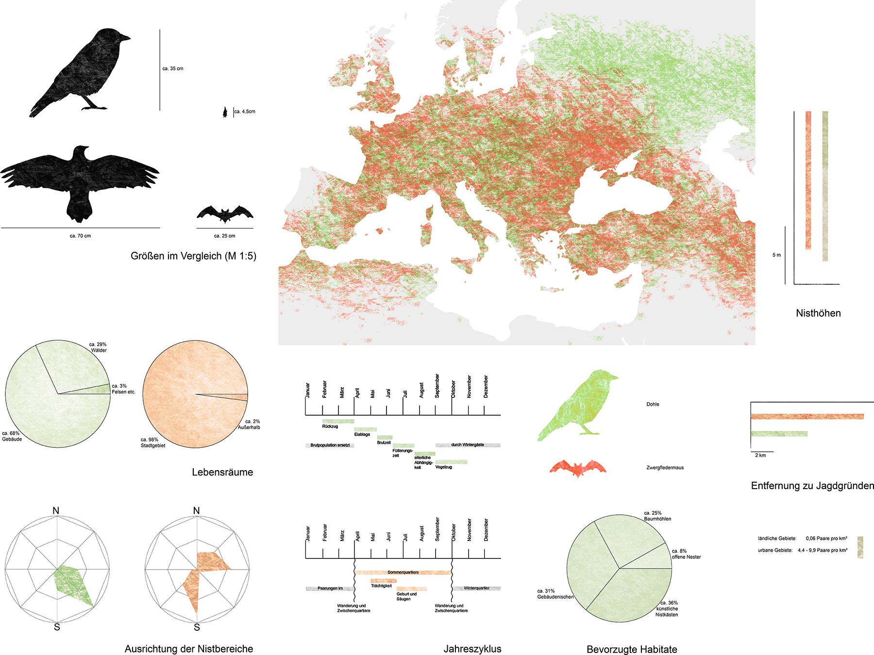 Analysen Habitat Wall I Hanna Murzin und Christopher Kuriyami